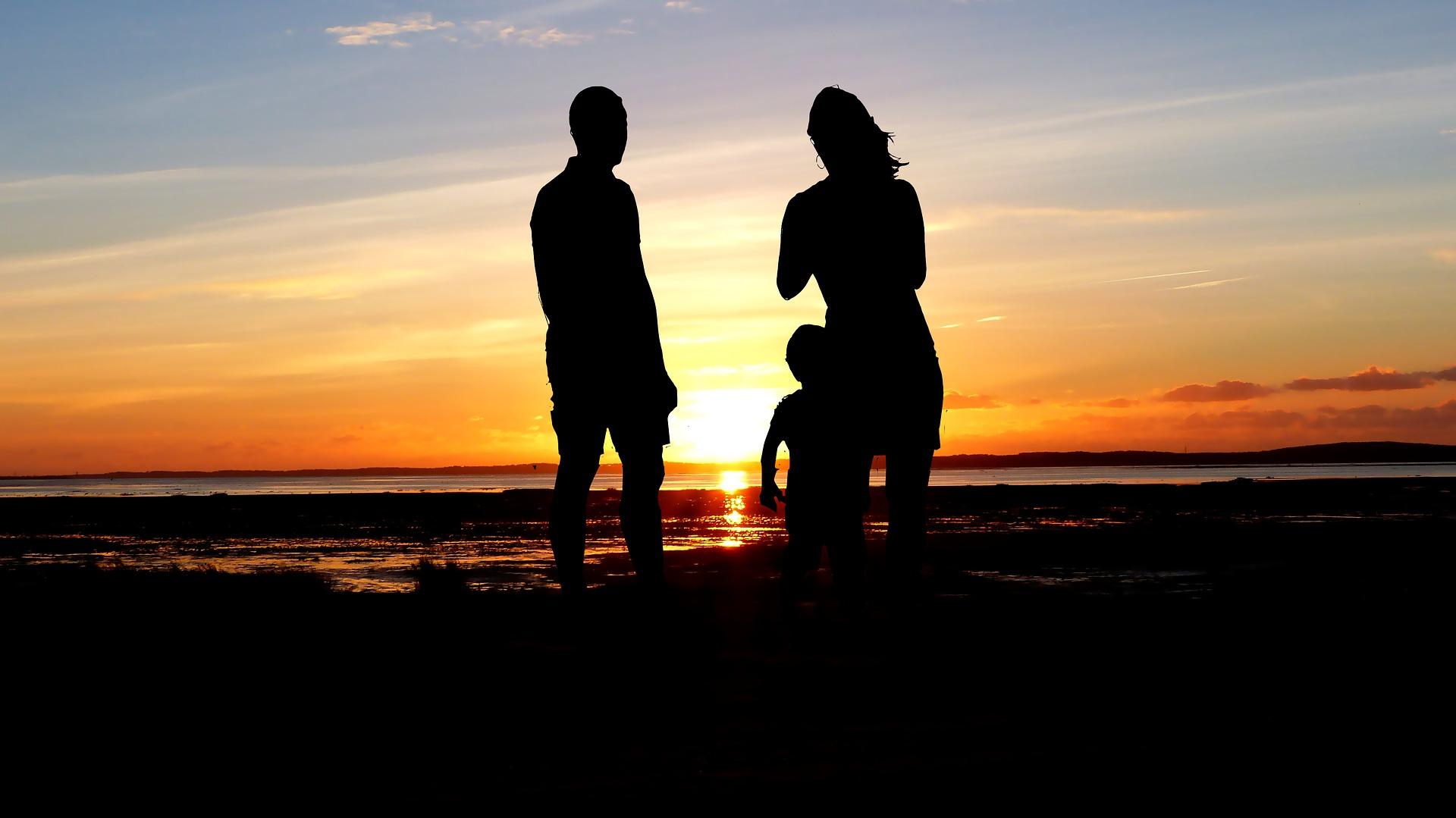 国内・国際的な家族子にかかわる諸問題(ハーグ条約や国際離婚・相続を含む)